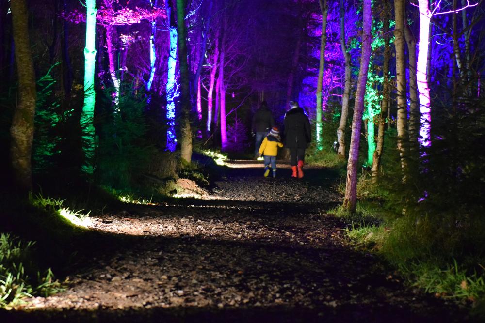 Magical illuminations at the Balfron Woodland Light Experience