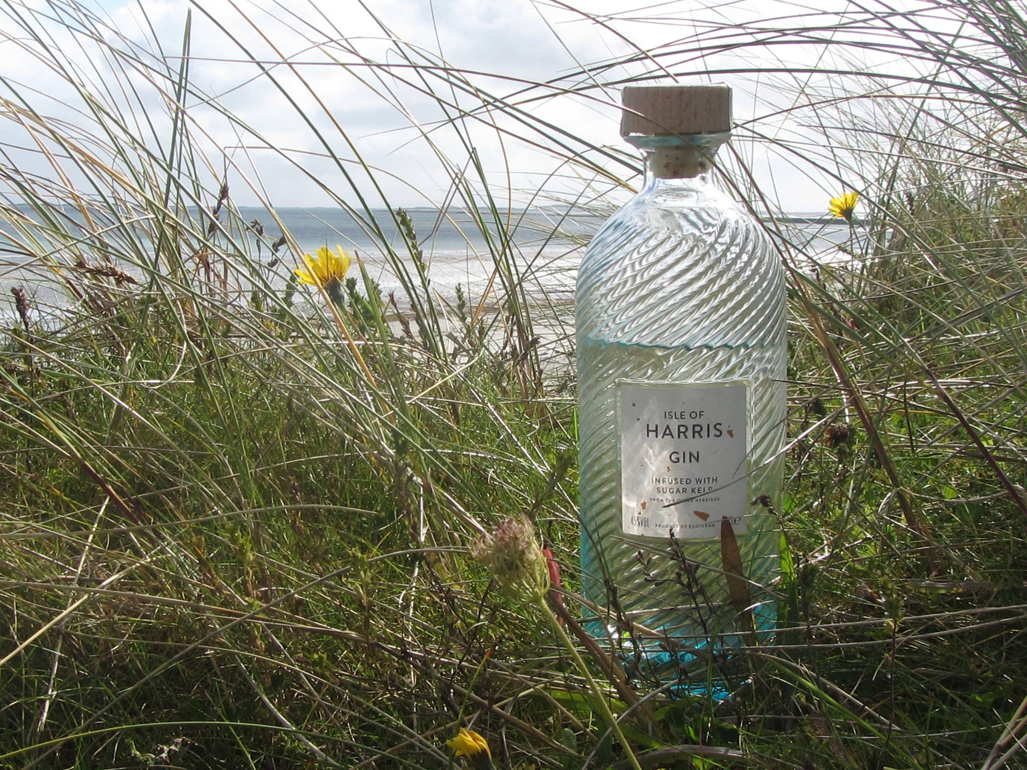 Taking you to the best gins, in the most beautiful locations