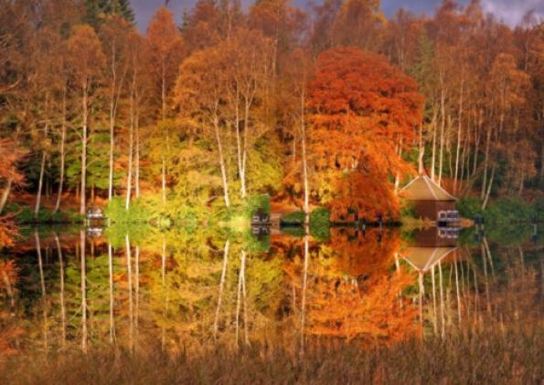Autumn colour at Loch Faskally