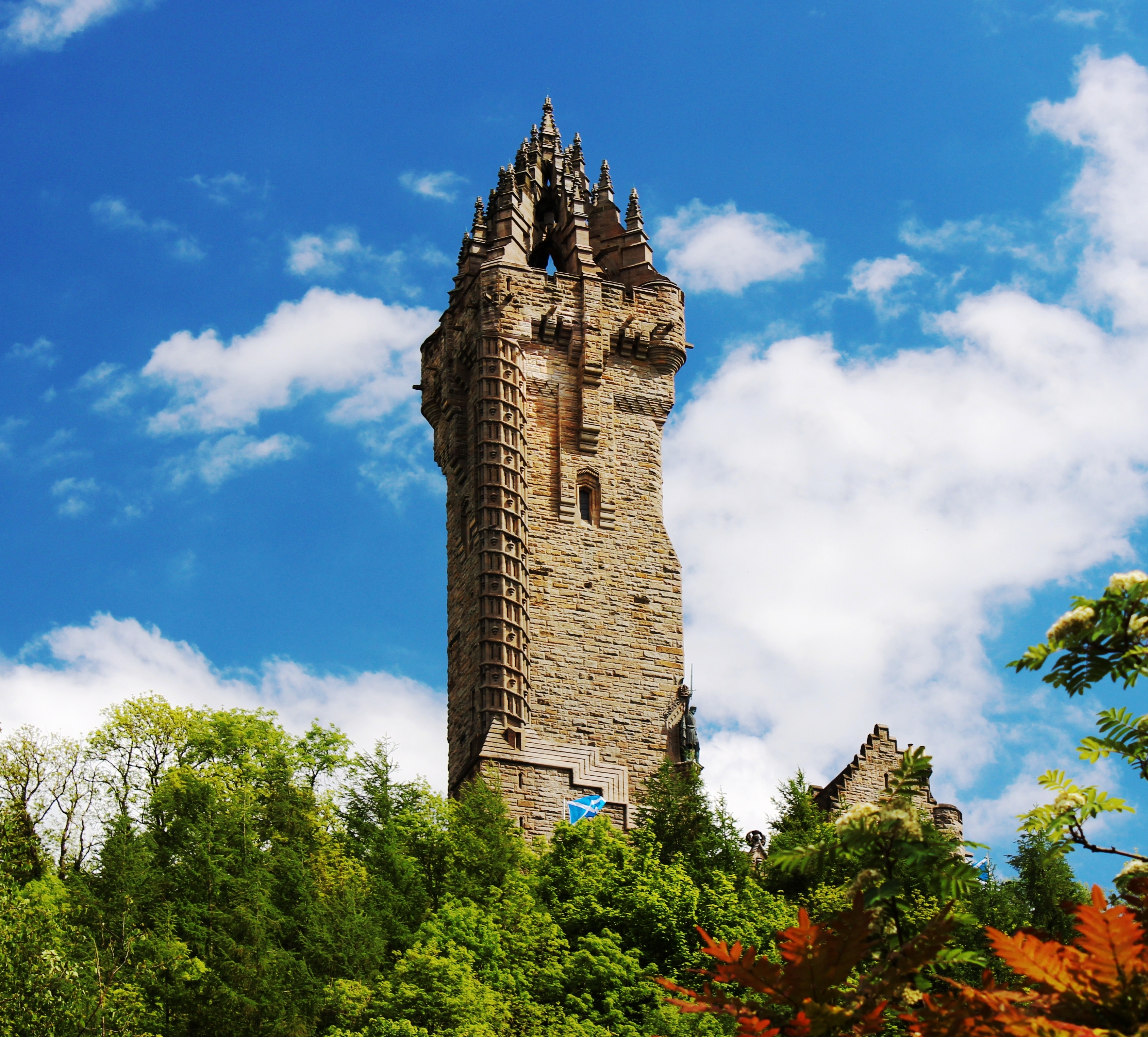 Step into spring at the Wallace Monument
