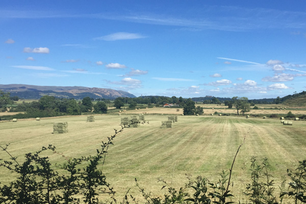 Sunny summer view across Carse of Stirling towards Stirling Castle