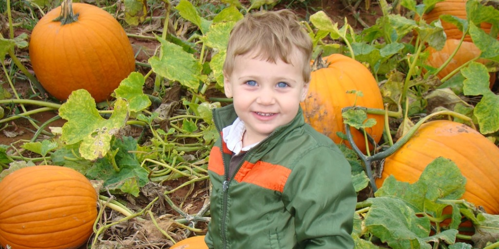 Kids are Potty about Pumpkins at Dobbies this October